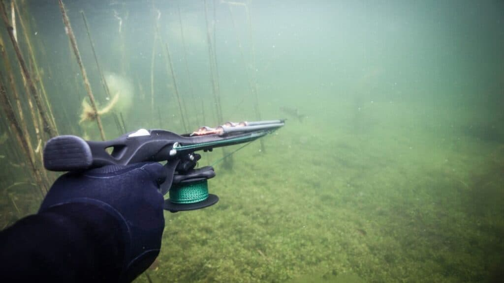 10 Crucial Things To Know Before Buying Your First Speargun